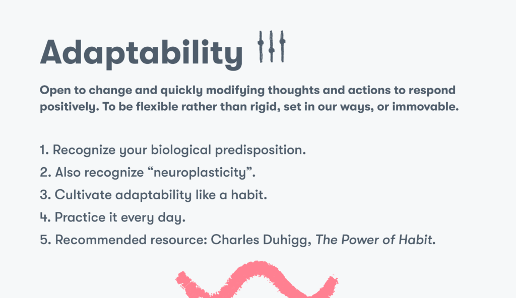 Customer service skill 12 adaptability